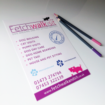 A5 Leaflet Print Fetch Walk and Sit