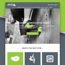 Avid Indoor Climbing Website Design Ipswich